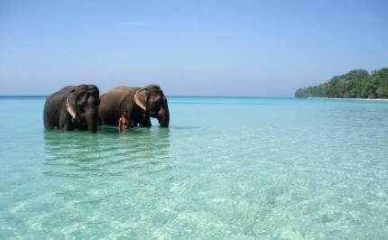 Havelock-Island-at-Andaman-and-Nicobar-e1427799484523
